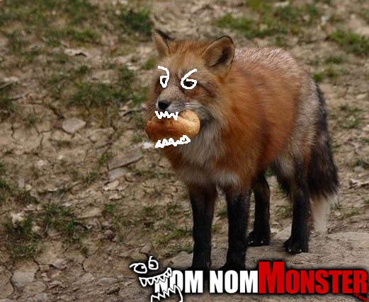 Fox eating a roll