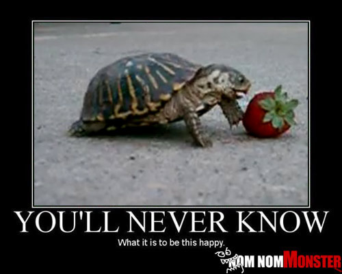 One Happy Strawberry Turtle