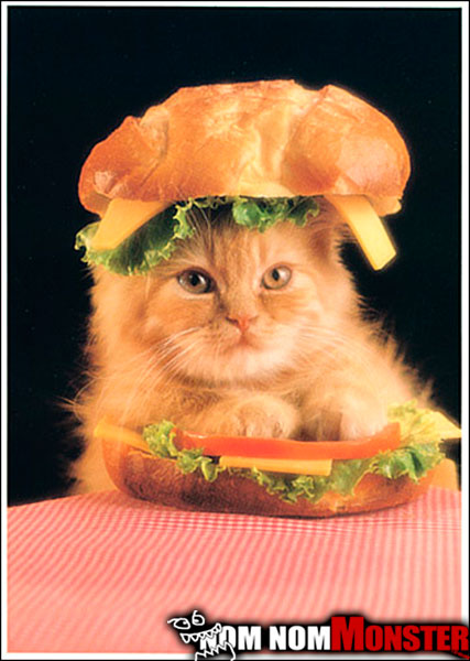 cat-big-mac