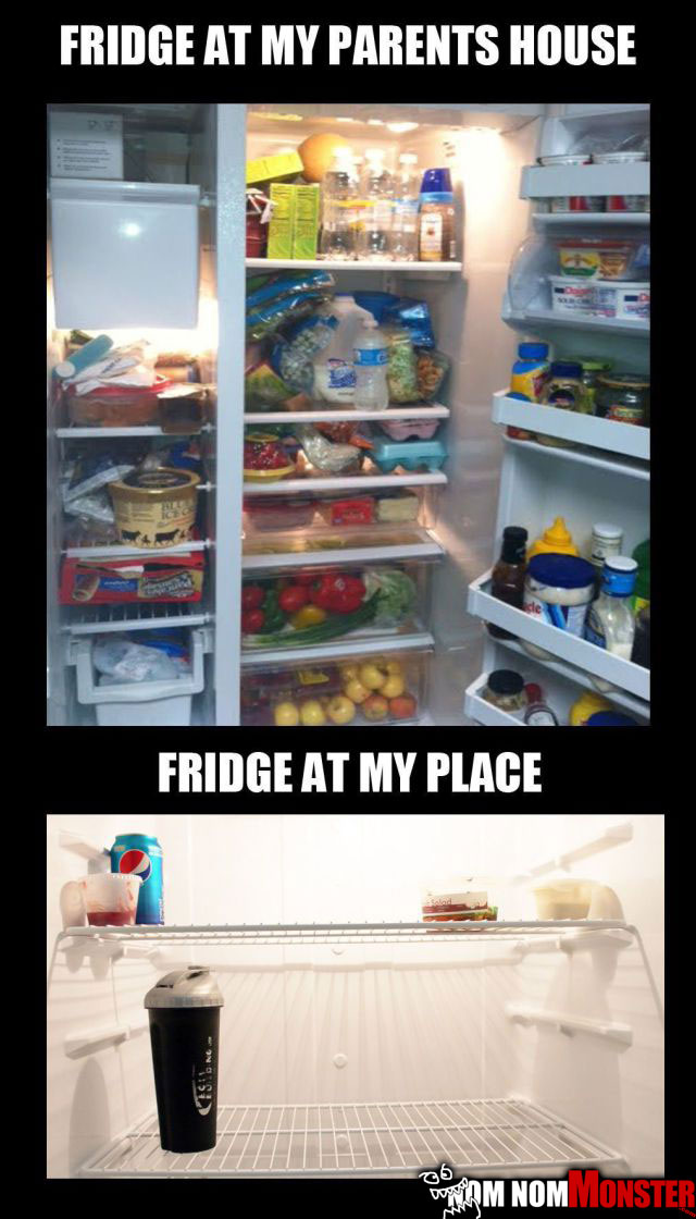 bachelor-fridge