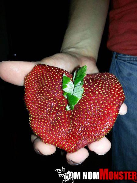 strawberry-patty